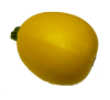 courgette_jaune_ronde